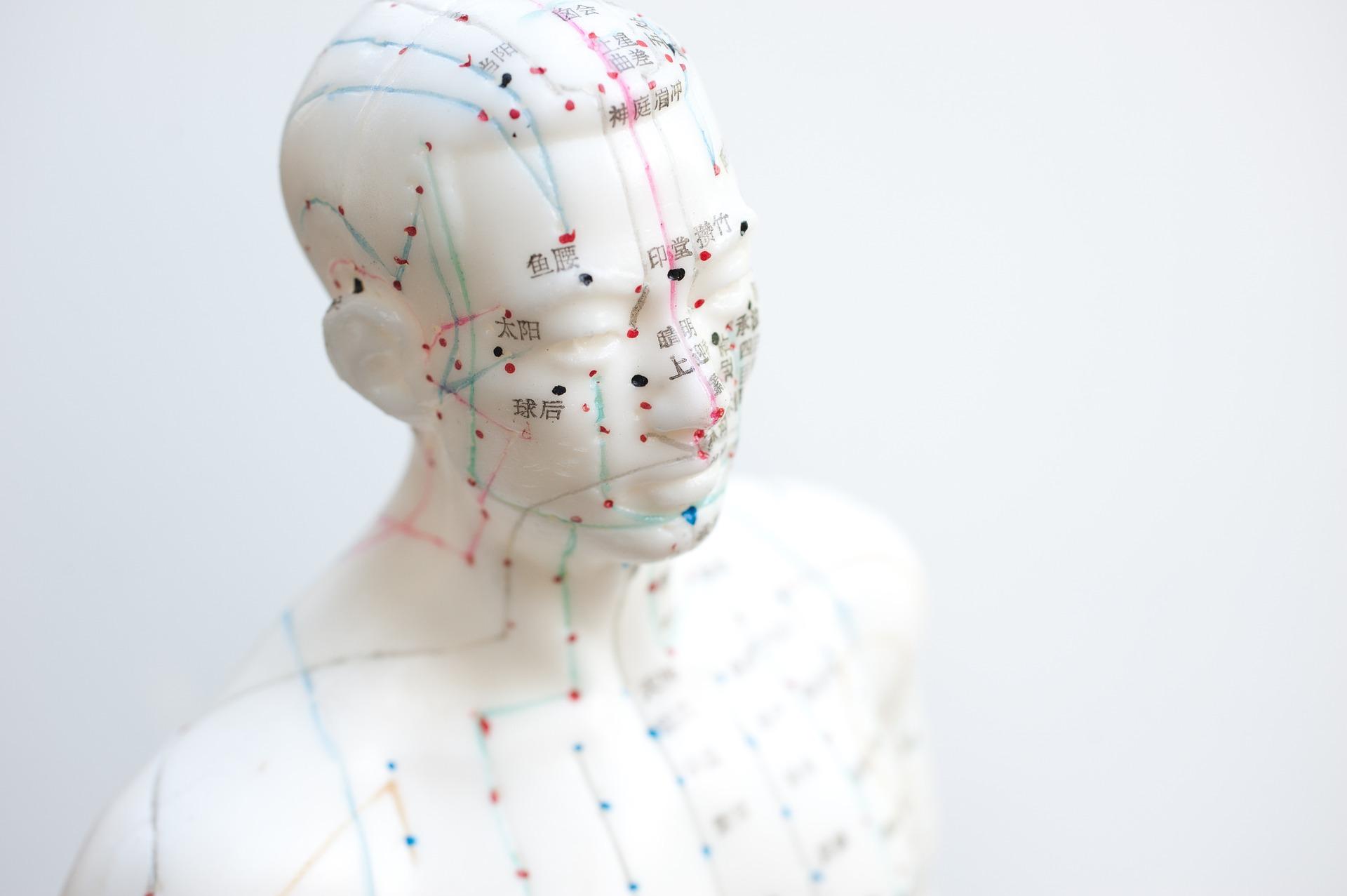 akupresura - akupresurní a akupunkturní body