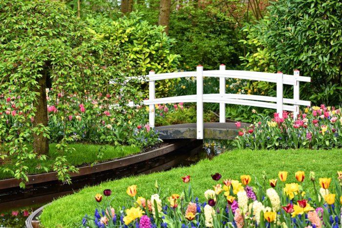 relaxační cvičení – zahrada