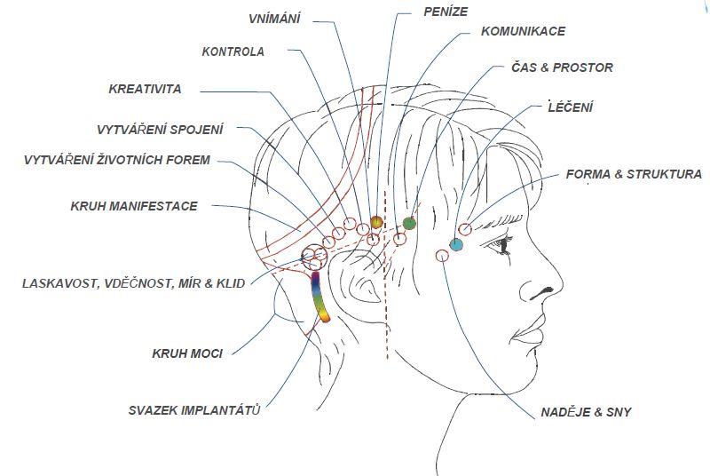 access bar metoda – schéma hlavy a bodů pro terapii
